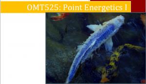Master Points Energetics