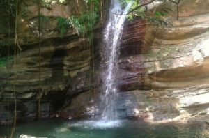 Healing Waters of Jamaica